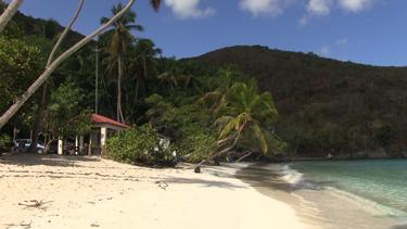 Maho Bay Beach St. John USVI